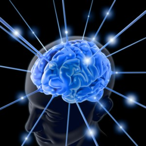 Yugioh Brain